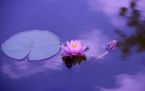 benefici-della-meditazione